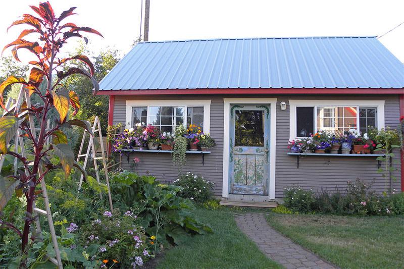 2-vasos-de-plantas-janela-casa