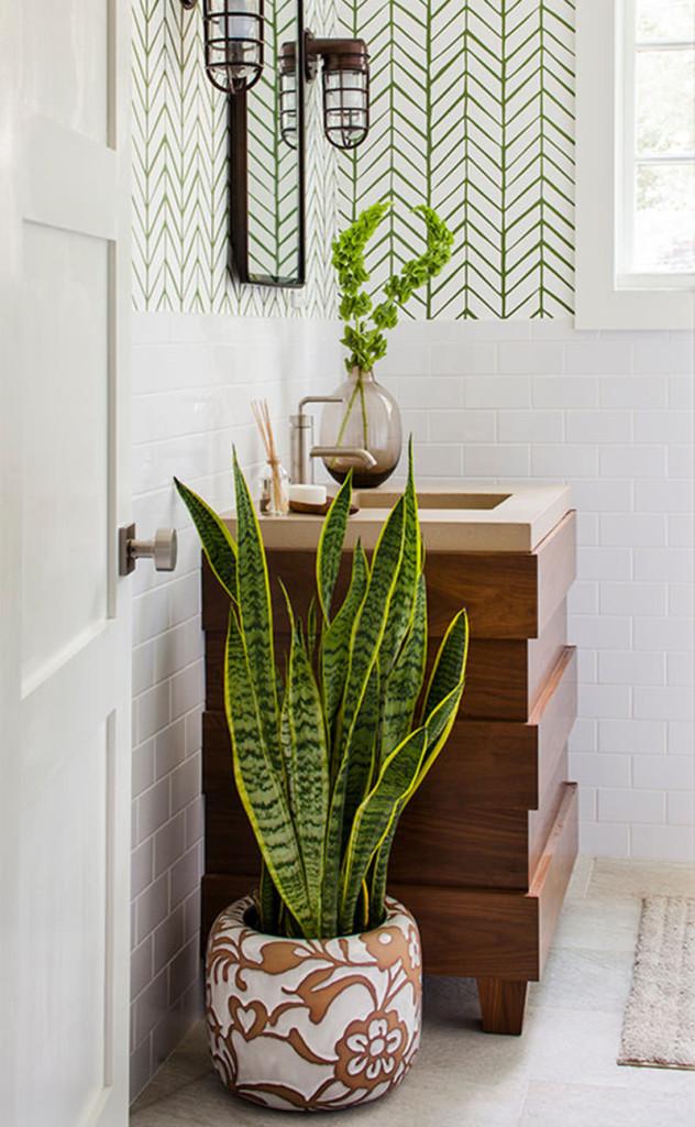 24-vasos-planta-banheiro