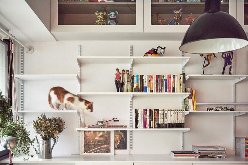 04-prateleira-livros-gato