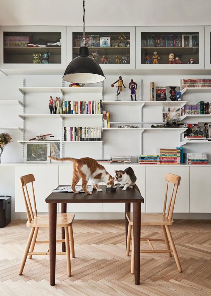 09-gatos-apartamento